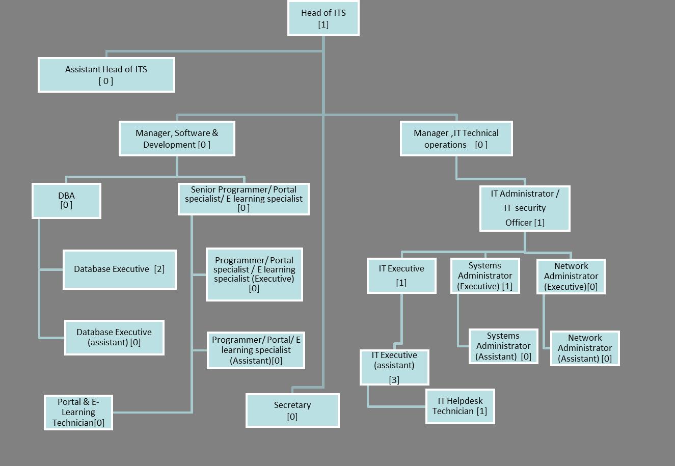 Organizational_Structure_-_GUtech